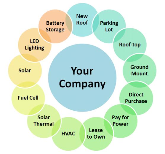 company options.png