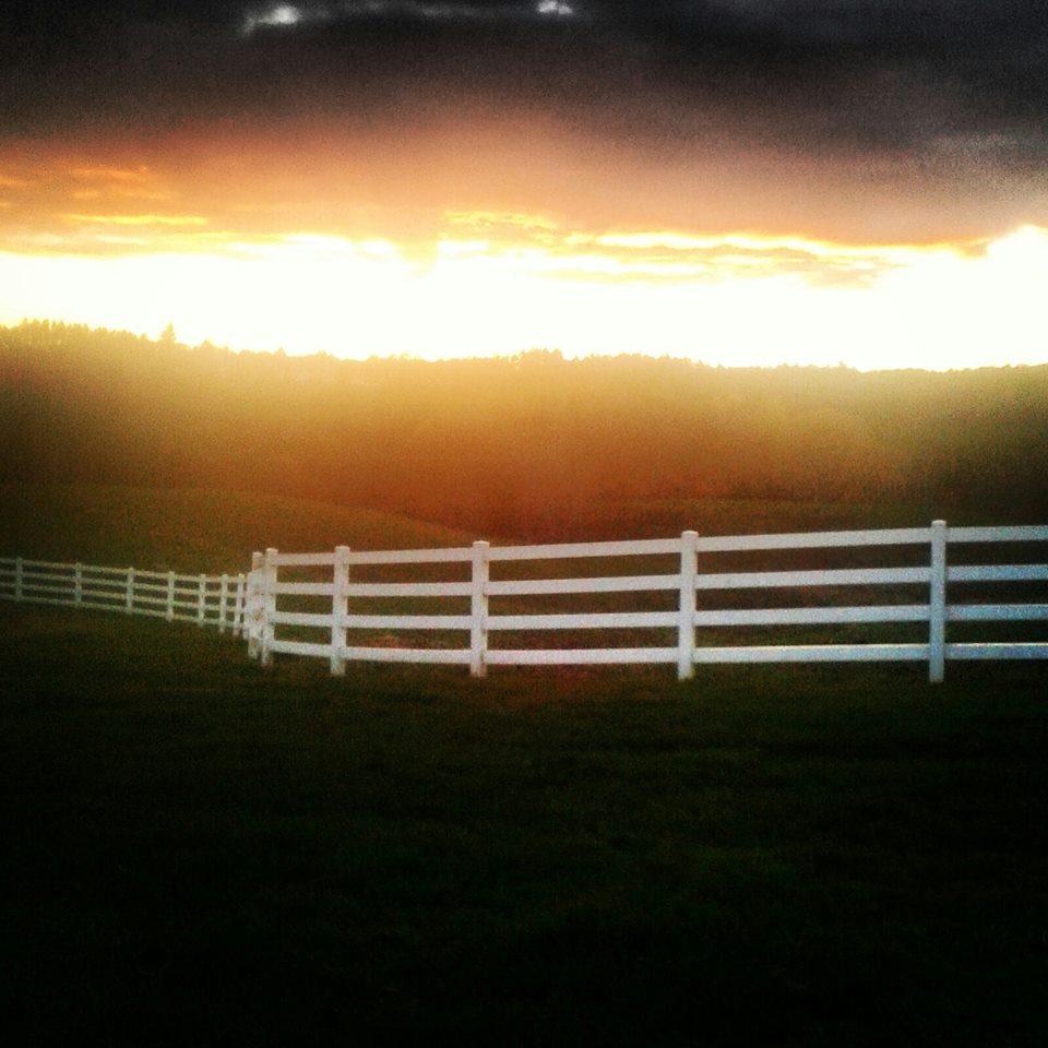 bakerbrook fence.jpg