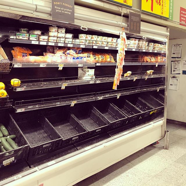 This is what happens at a grocery store in Texas when the forecast says it *might* snow tomorrow.