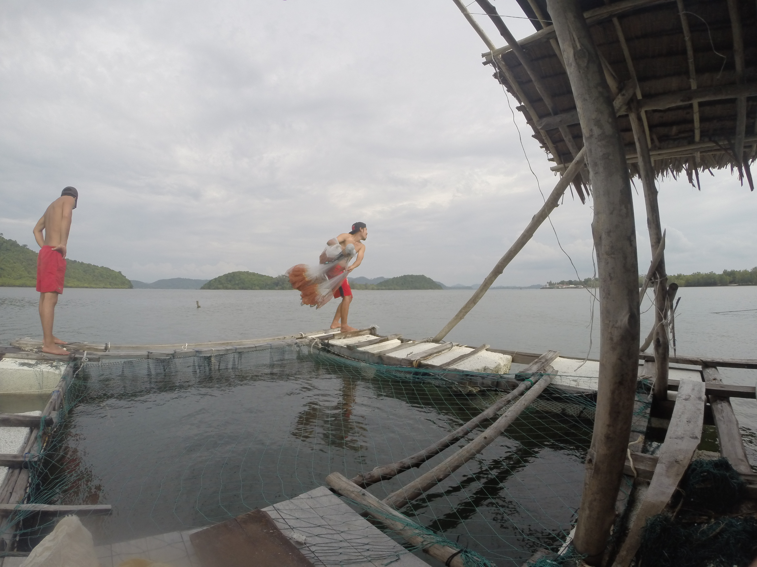 On the floating fish farm, watching Oh throw the big fishing net into the water.