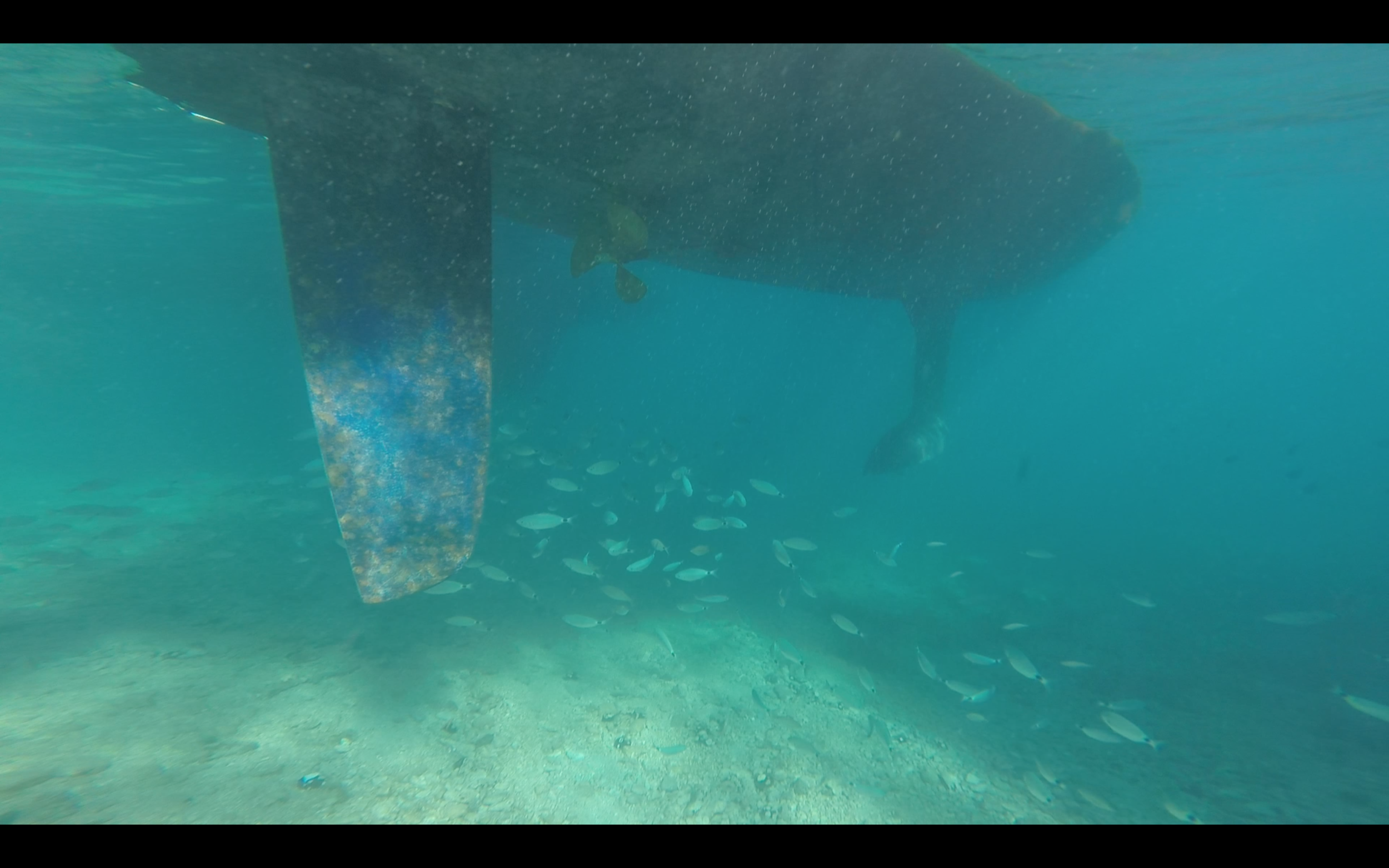 Checking the depth below our keel and rudder.