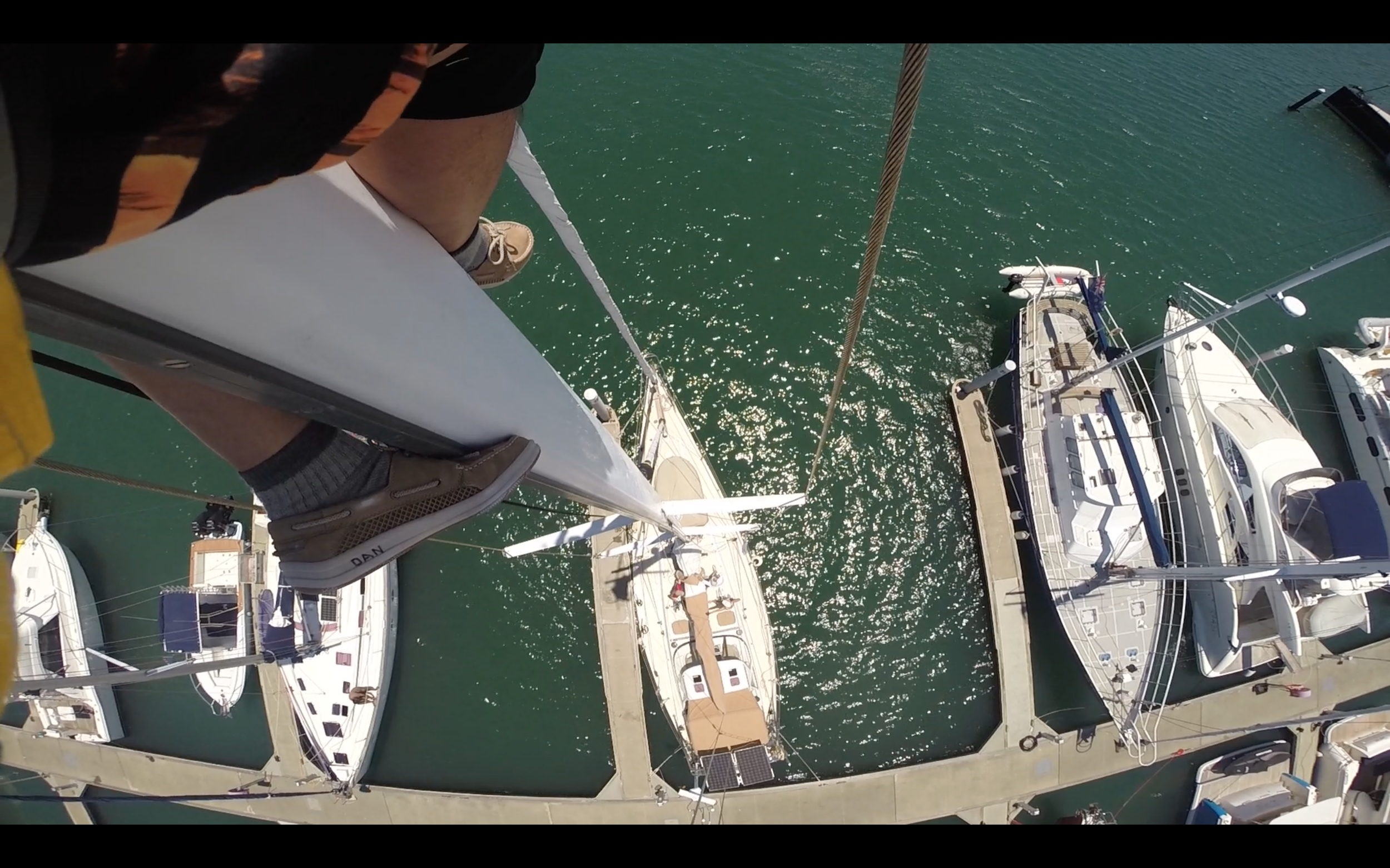 Yikes, pretty far up. (About 60 feet!)