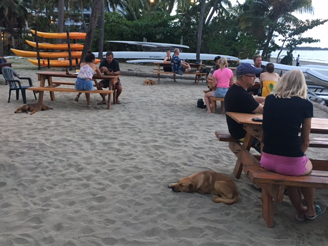 An evening at our favorite sunset bar, Travellers. Funny that each table has a dog.
