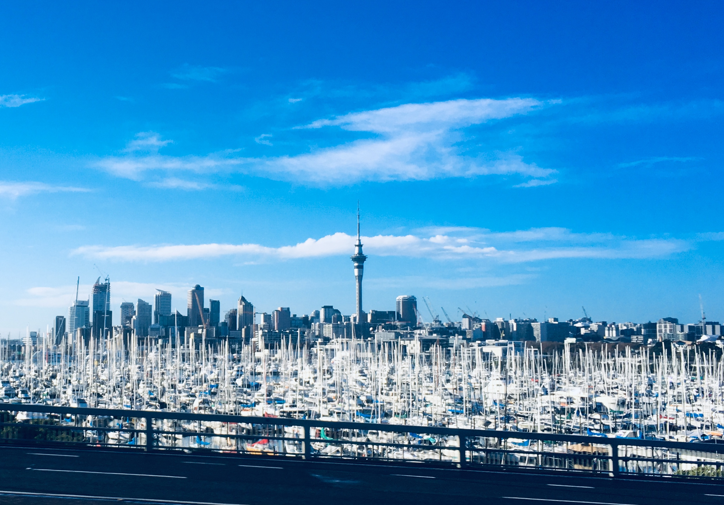 """View of Auckland, """"The City of Sails,"""" as I head north on the bus to Whangarei and Marsden Cove Marina."""