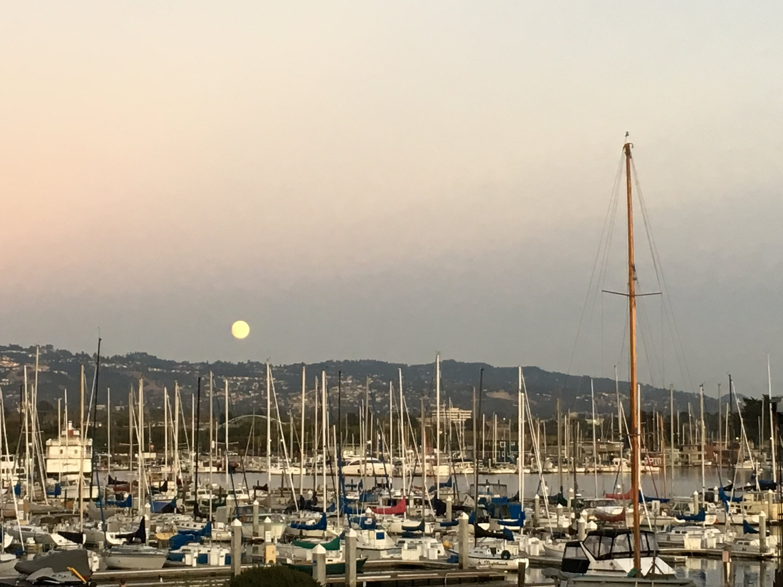 Berkeley Marina as the moon rises in the east.