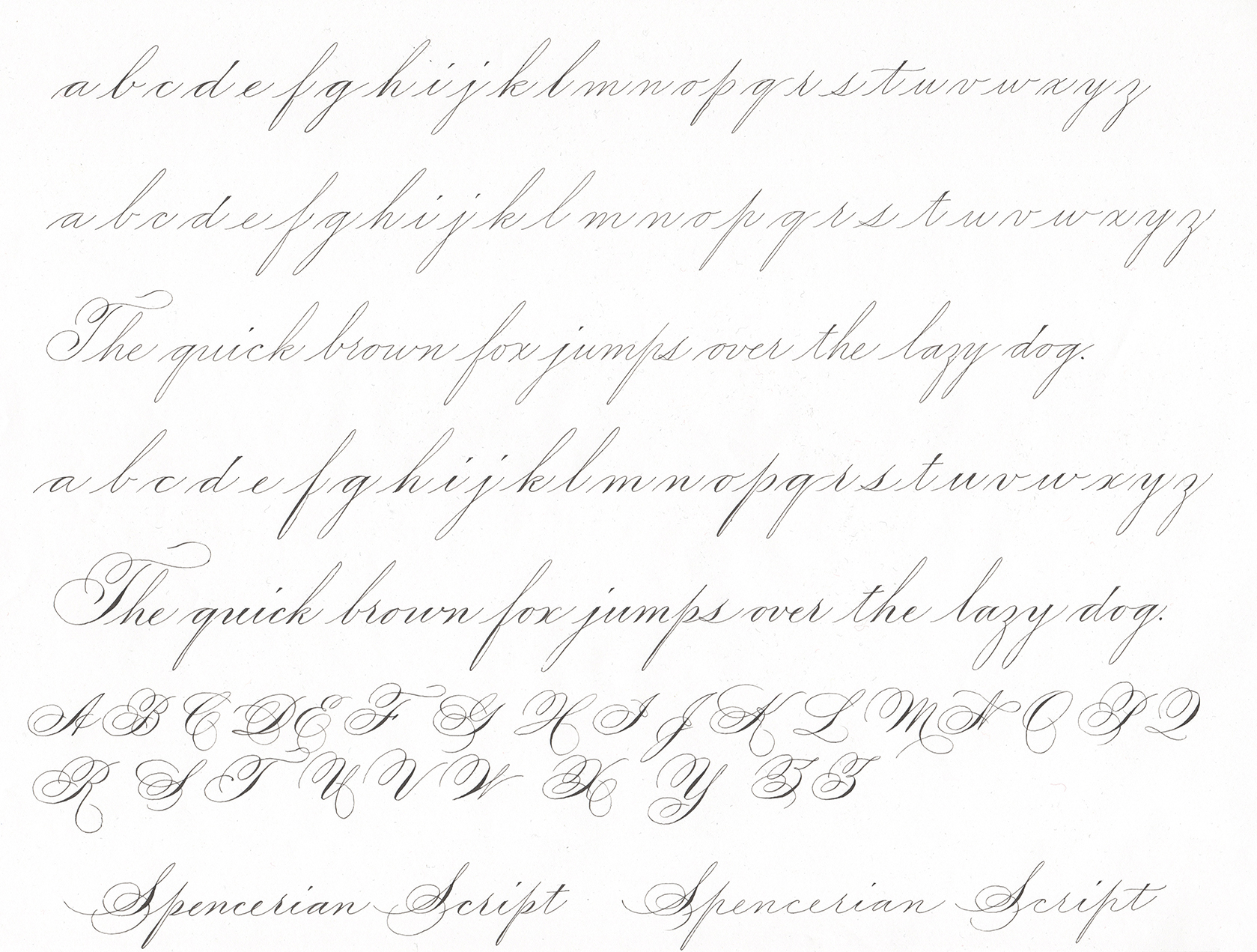 Spencerian Script - Unshaded and Shaded