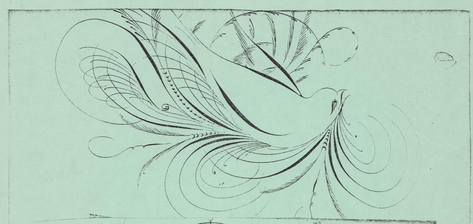 Bird-7_WEB.jpg