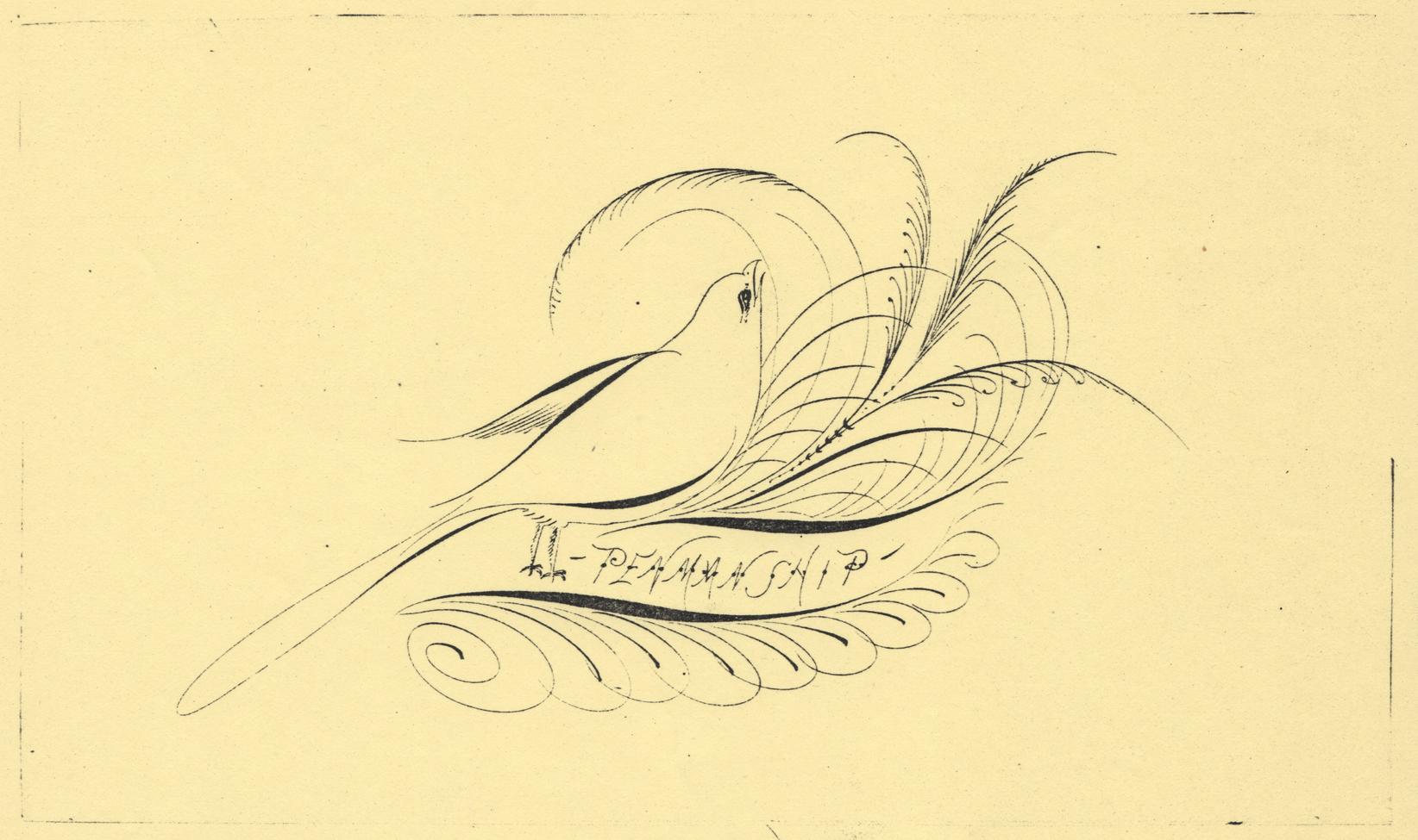 Bird-with-Feet-3_WEB.jpg
