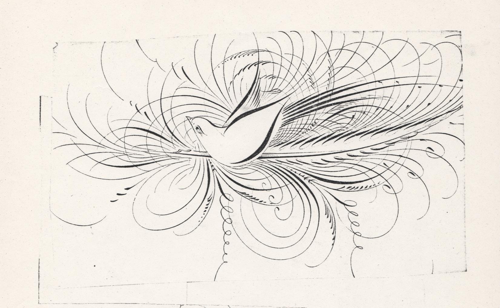 Bird-with-Quill-1_WEB.jpg