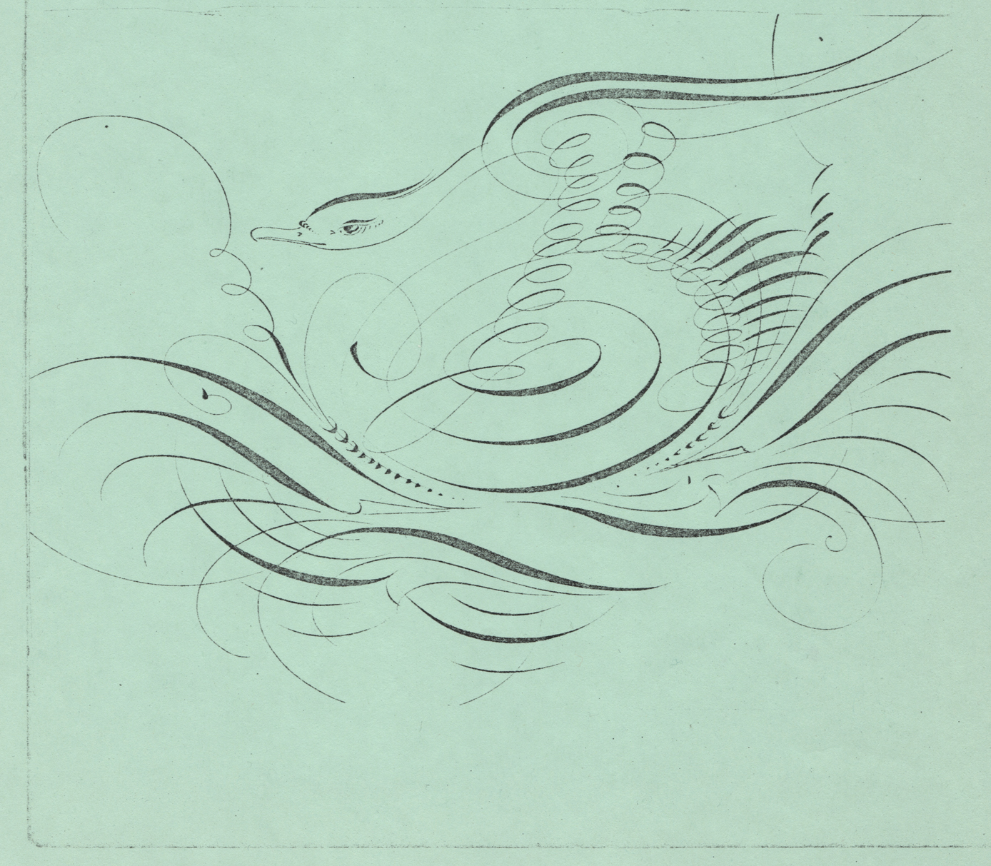 Swan-2_WEB.jpg
