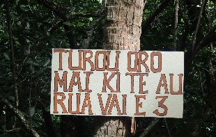 TIOTO R3 6.jpg