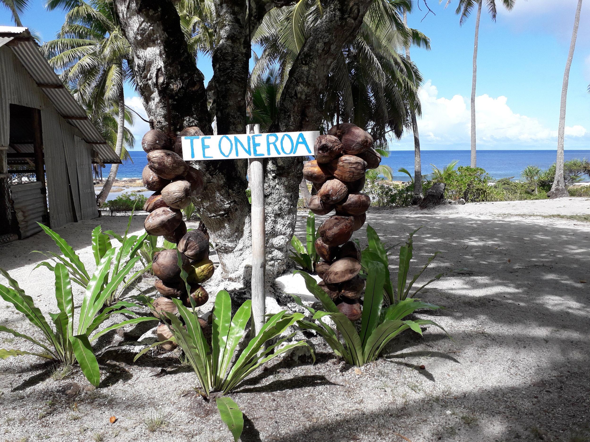 Oneroa  Beach  Winner.22.jpg