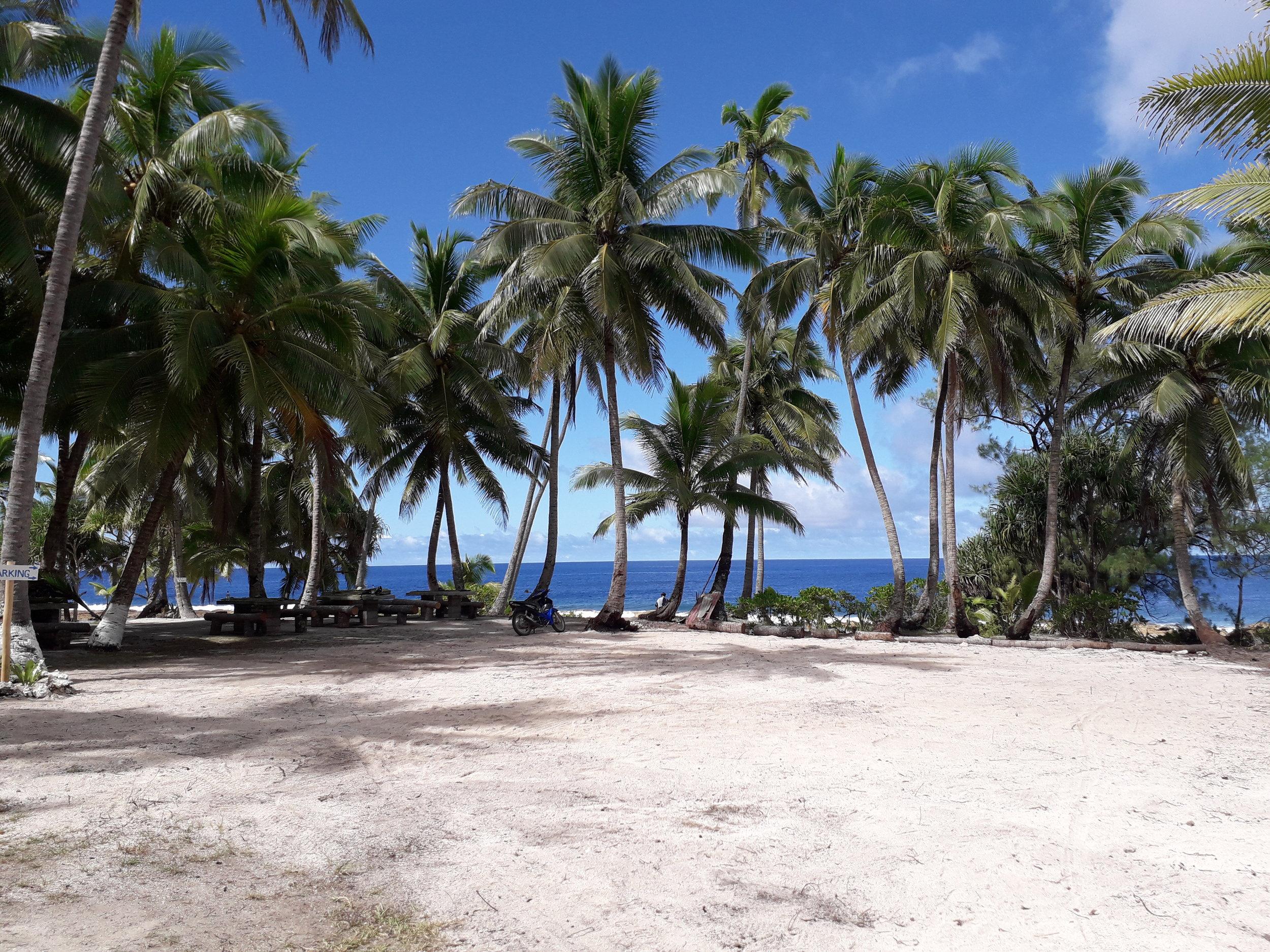 Oneroa Beach   Winner.2.jpg