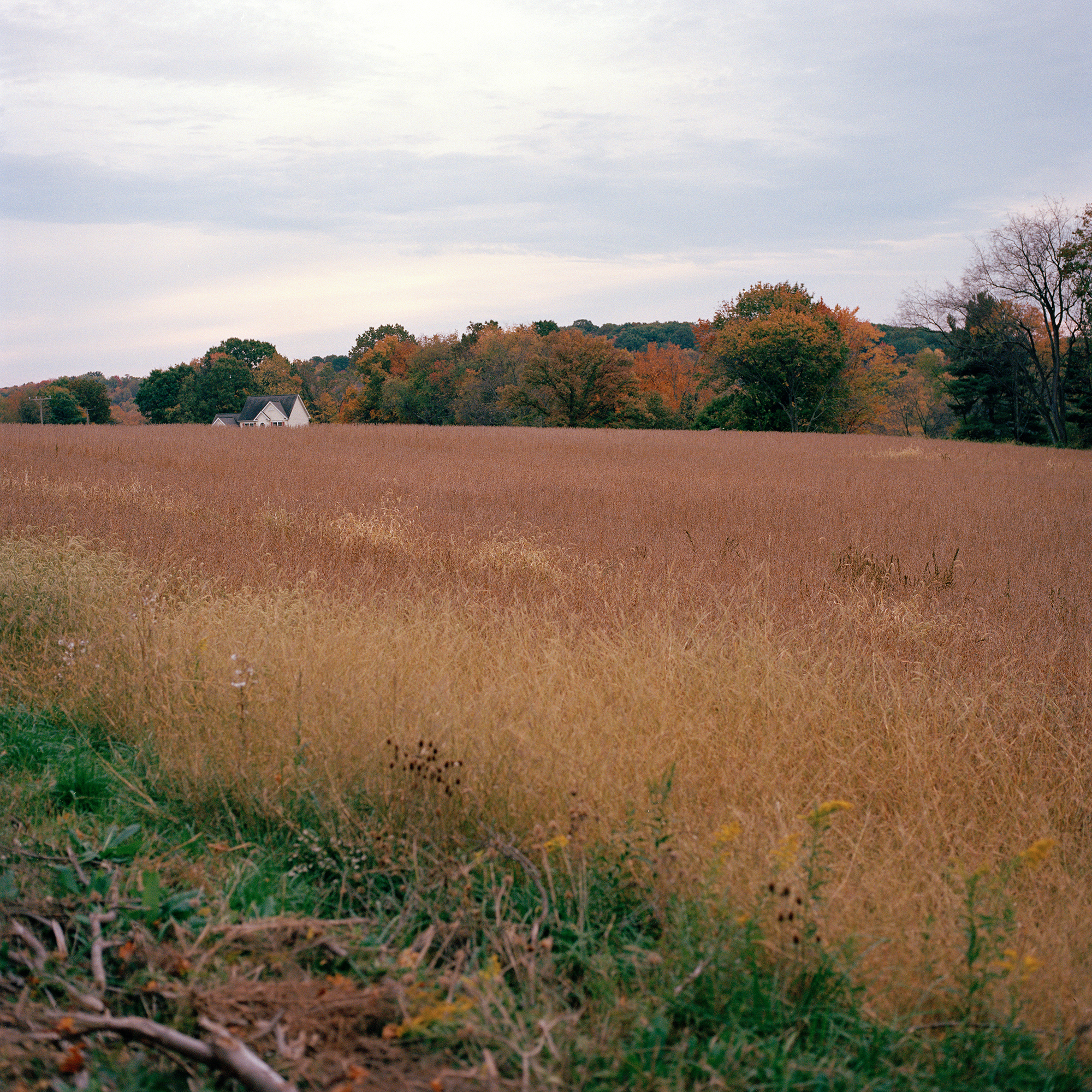 A home along the horizon of a field in fall