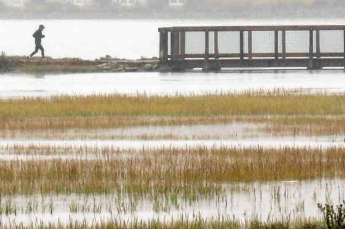 The Pickleweed Inlet of Richardson Bay in Mill Valley Friday. The first set of storms this season aided area reservoirs and eased fire concerns. (Image credits: James Cacciatore/Special to the Marin Independent Journal)