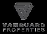 Vanguard_Grey.png