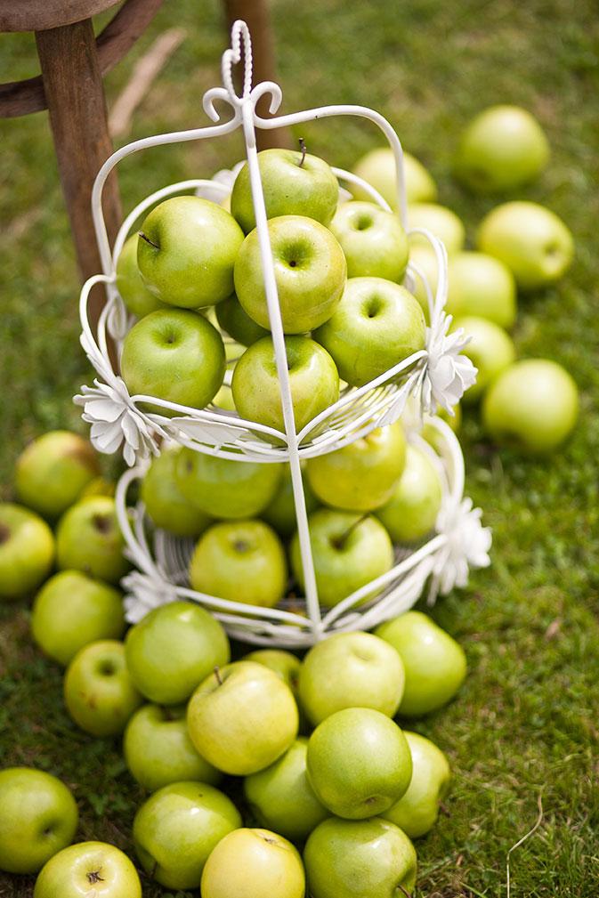 Apples at Afton