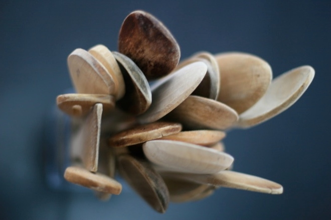 thumb_spoons from above_1024.jpg