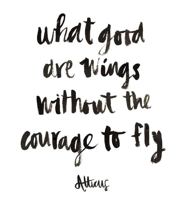 0696112c16c2b45b13bb169ae53b091d--quotes-flying-flying-quotes-inspirational.jpg