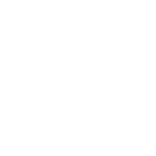 Life-Groups-Trans.png