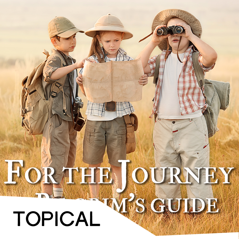 For The Journey - Cover.jpg
