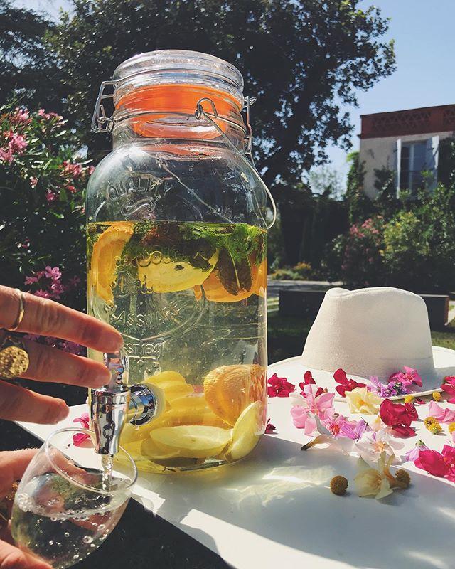 Quoi de mieux qu'un rafraîchissement par ces grandes chaleurs ? ☀️🍊 Découvrez notre eau faite maison, bio et détox, au Manoir du Prince 😋🌸 — Le Manoir du Prince est un lieu de réception à Toulouse géré par Miharu. Plus d'infos www.miharu.fr — #lemanoirduprince #manoirduprince #toulouse #occitanie #lesud #chaleur #photo #picoftheday #été #détox #fleurs #summer #couleurs #decoration #relax #event #wedding #mariage #lieudereception #seminaire #break