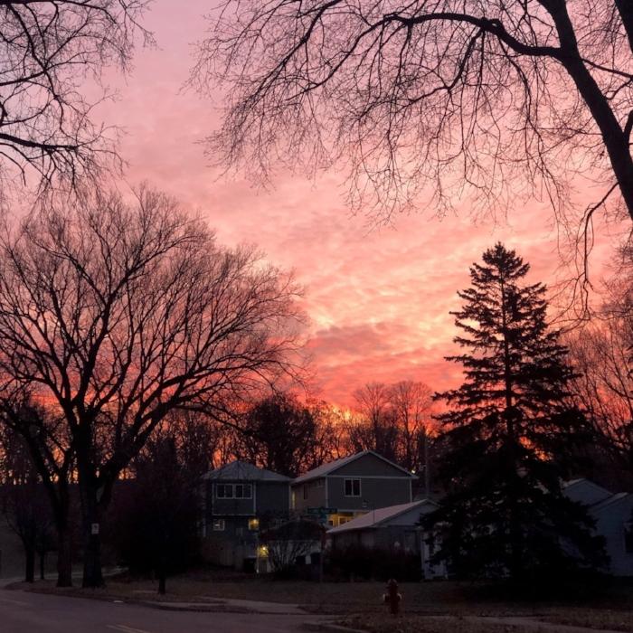 morning sunrise en route to bus stop.jpg