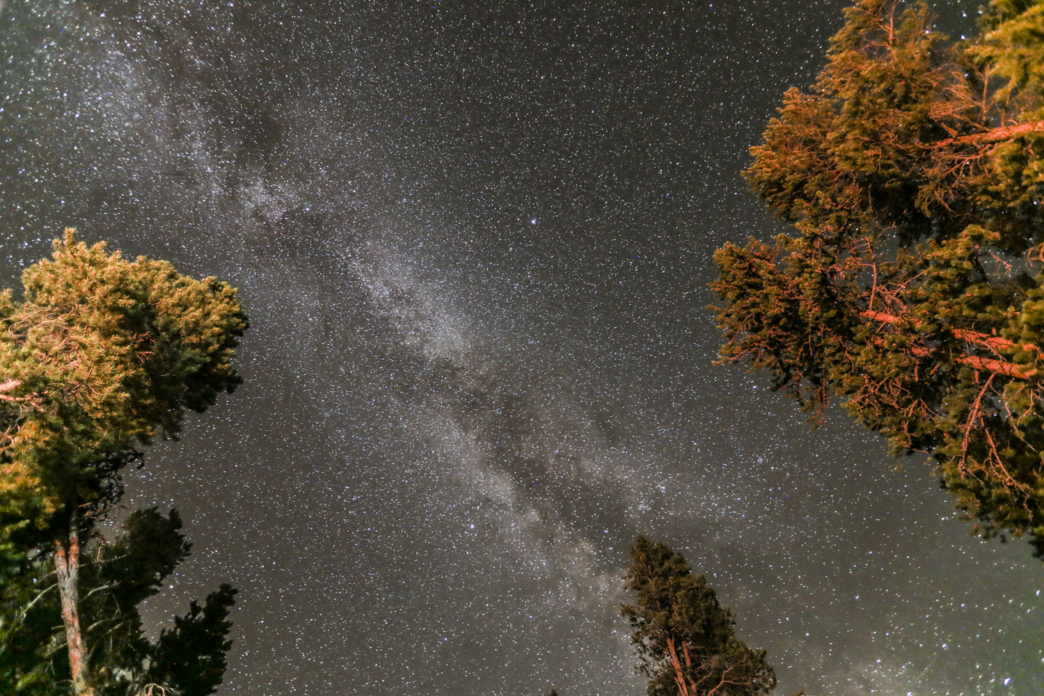 Like I mentioned before, I'm always mesmerized by this view. Looking straight up from our car at the camp site Sunday night.  Canon 6D, Canon 16-35mm f/2.8L @16mm (iso1600, f/2.8, 30s)
