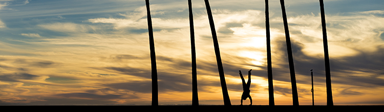 venice beach sunset silhouette austin paz adam caroselli