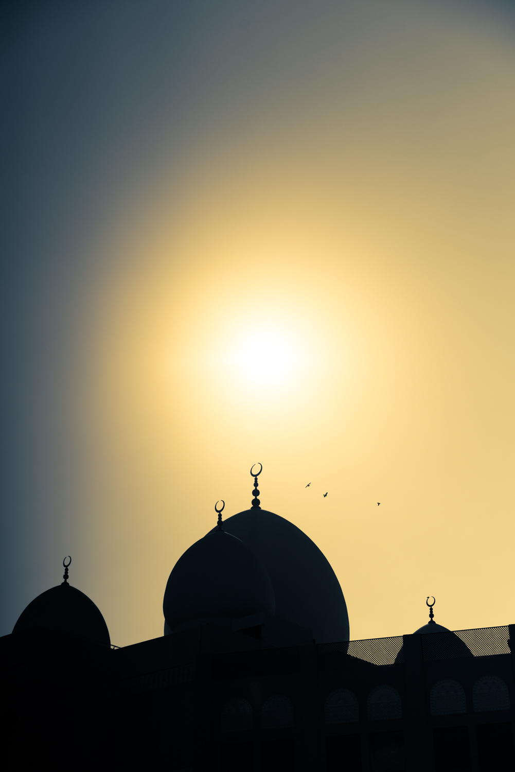 A mosques' golden silhouette against the sunset.  Sony A7RII, Zeiss 55mm f/1.8 (iso64, f/6.3, 1/8000s)