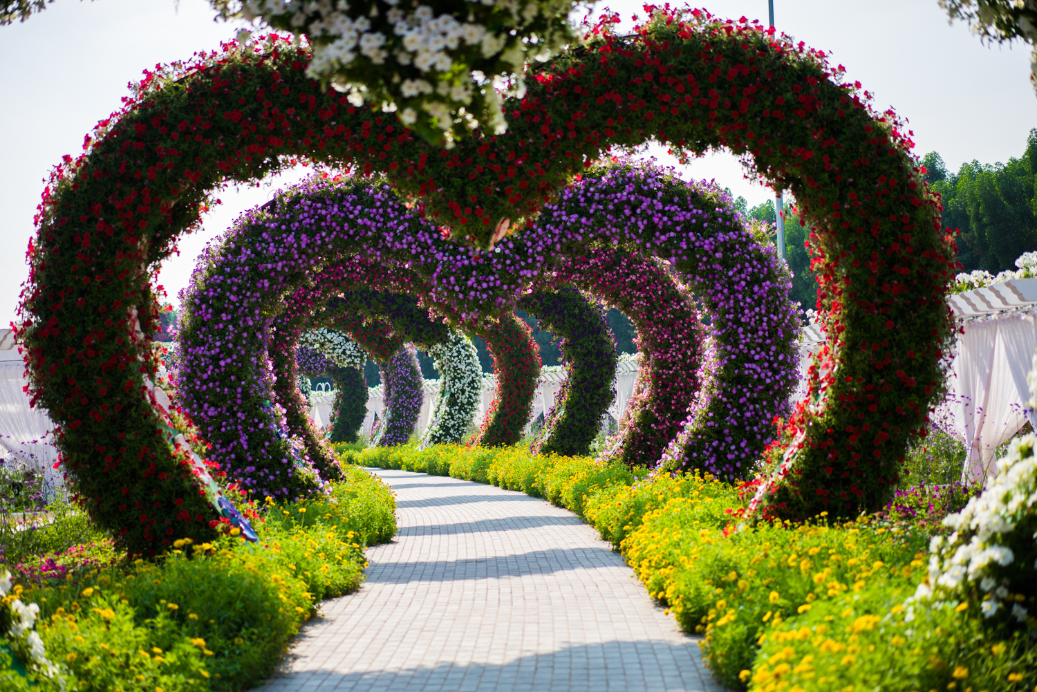 Heart shaped tunnel in the Miracle Garden.  Sony A7RII, Zeiss 55mm f/1.8 (iso100, f/1.8, 1/3200s)