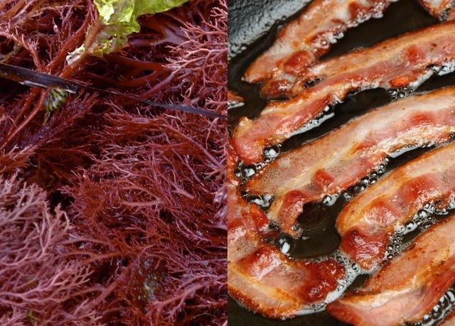 seaweed-and-bacon.jpg