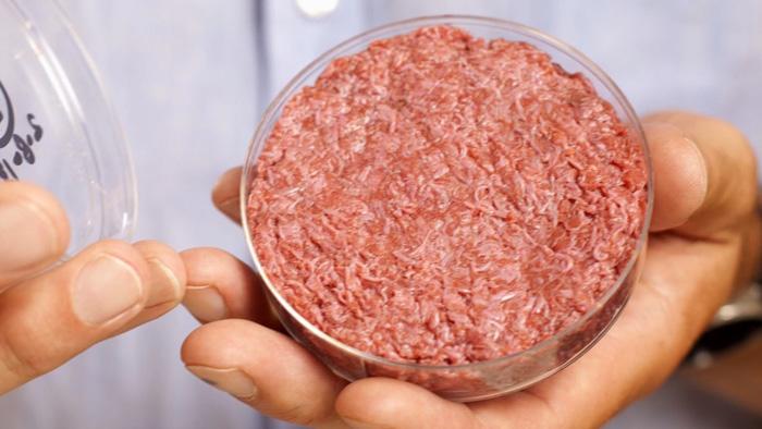 lab-grown-meat-lead-tdy-grown-beef-130805.jpg