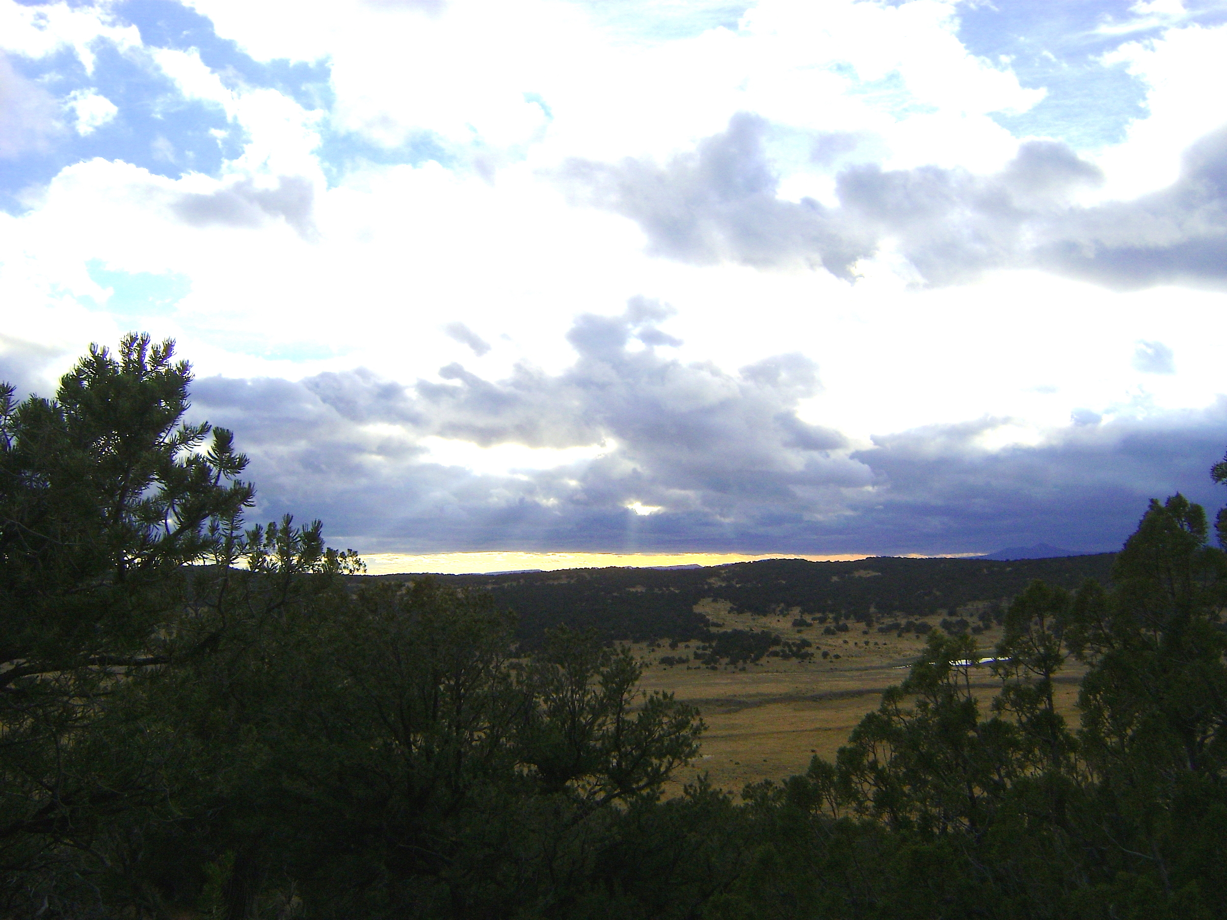 High Vantage in low land country overlooking a water hole frequented by elk.