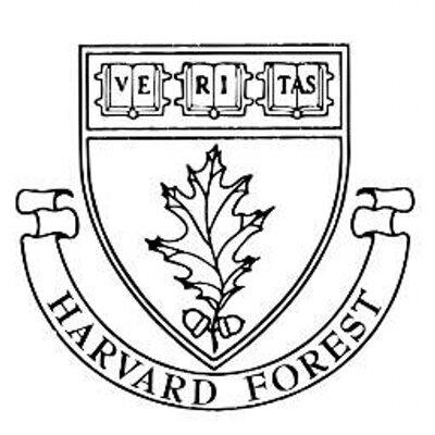 Harvard Forest.jpeg