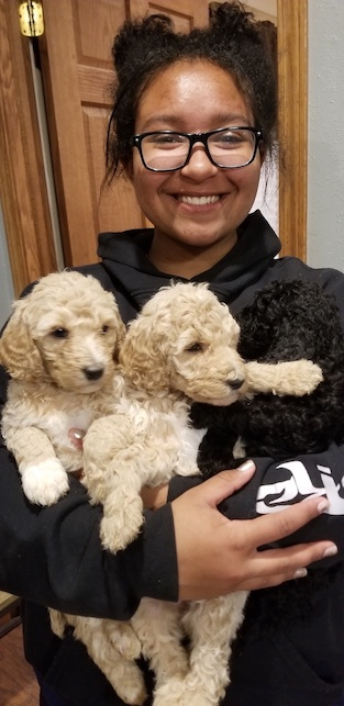 Puddle Jumper pups being held.jpg