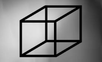 The Necker Cube: which face is closer?