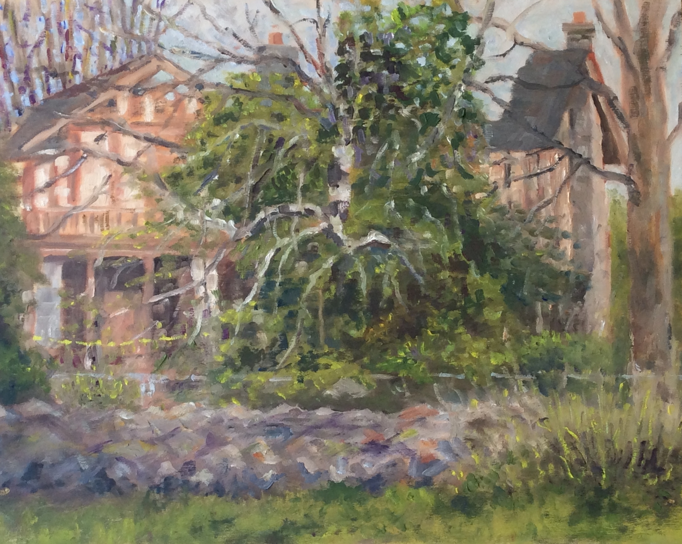Cat Lady's Derelict House   Oil 11 x 14