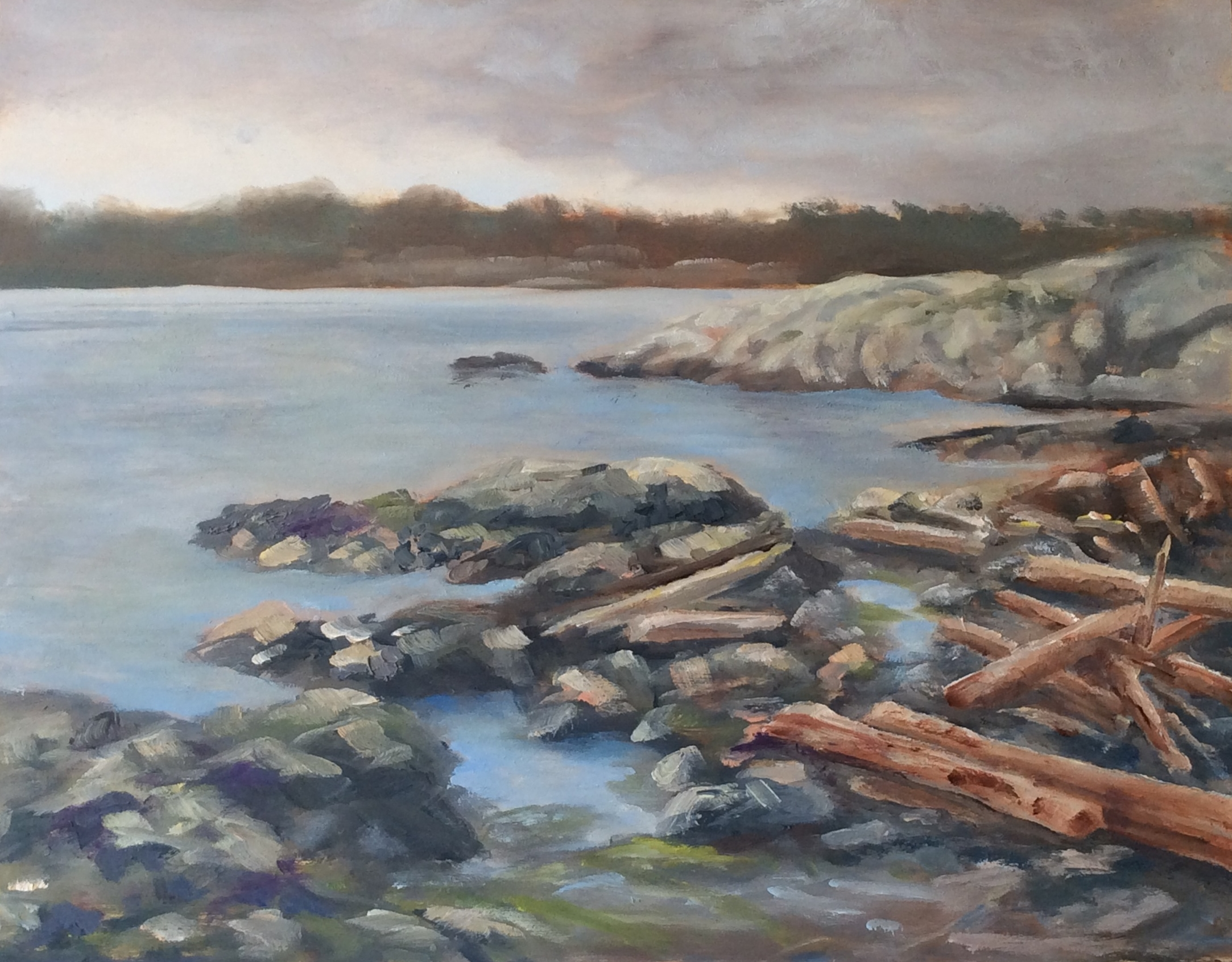 Cattle Point   Oil 11 x 14
