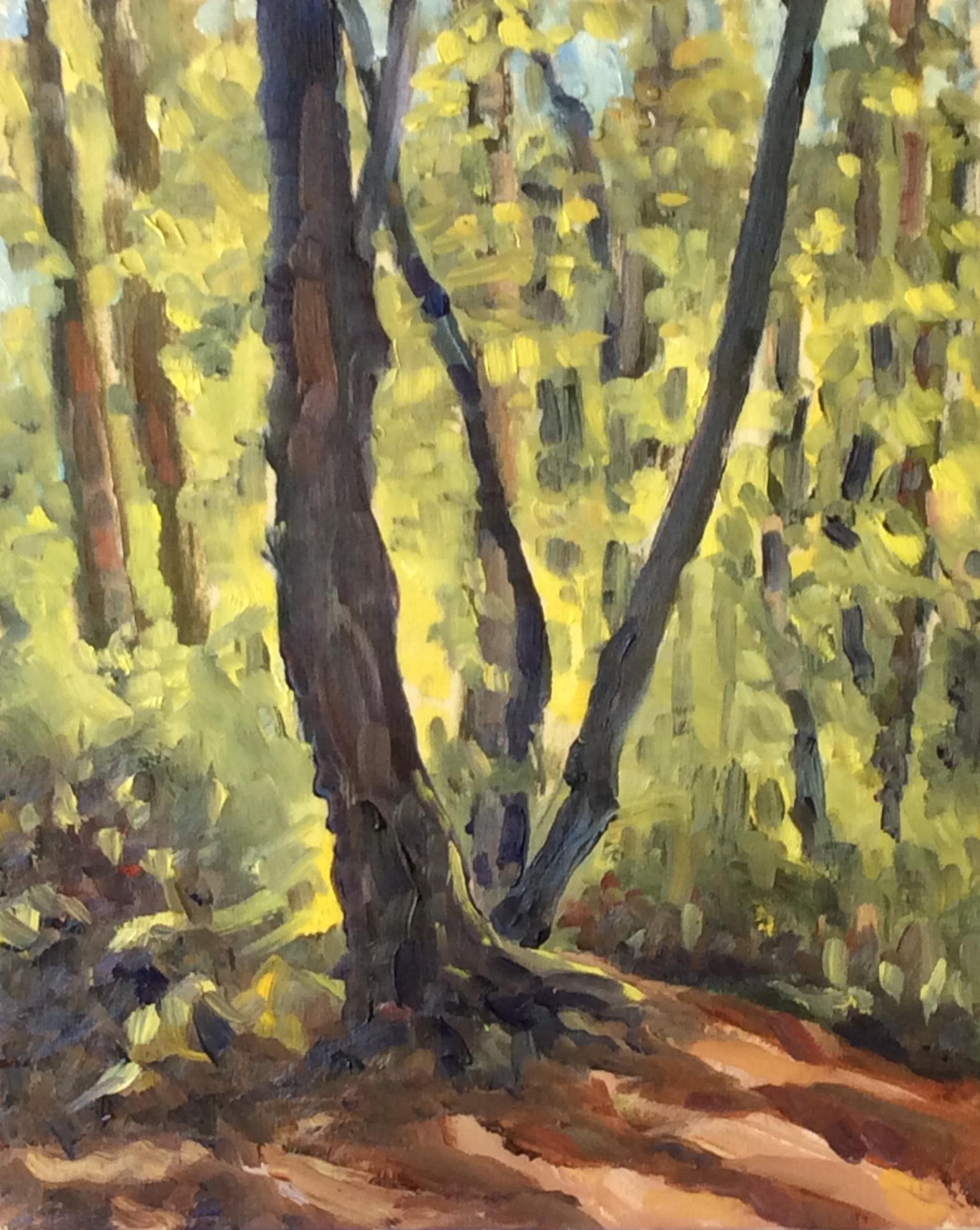 Mystic Vale Light    Oil 10 x 8