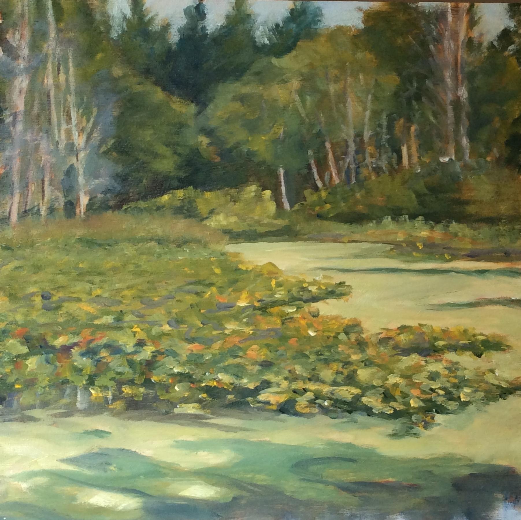 Beaver Lake Ponds   Oil 12 x 12