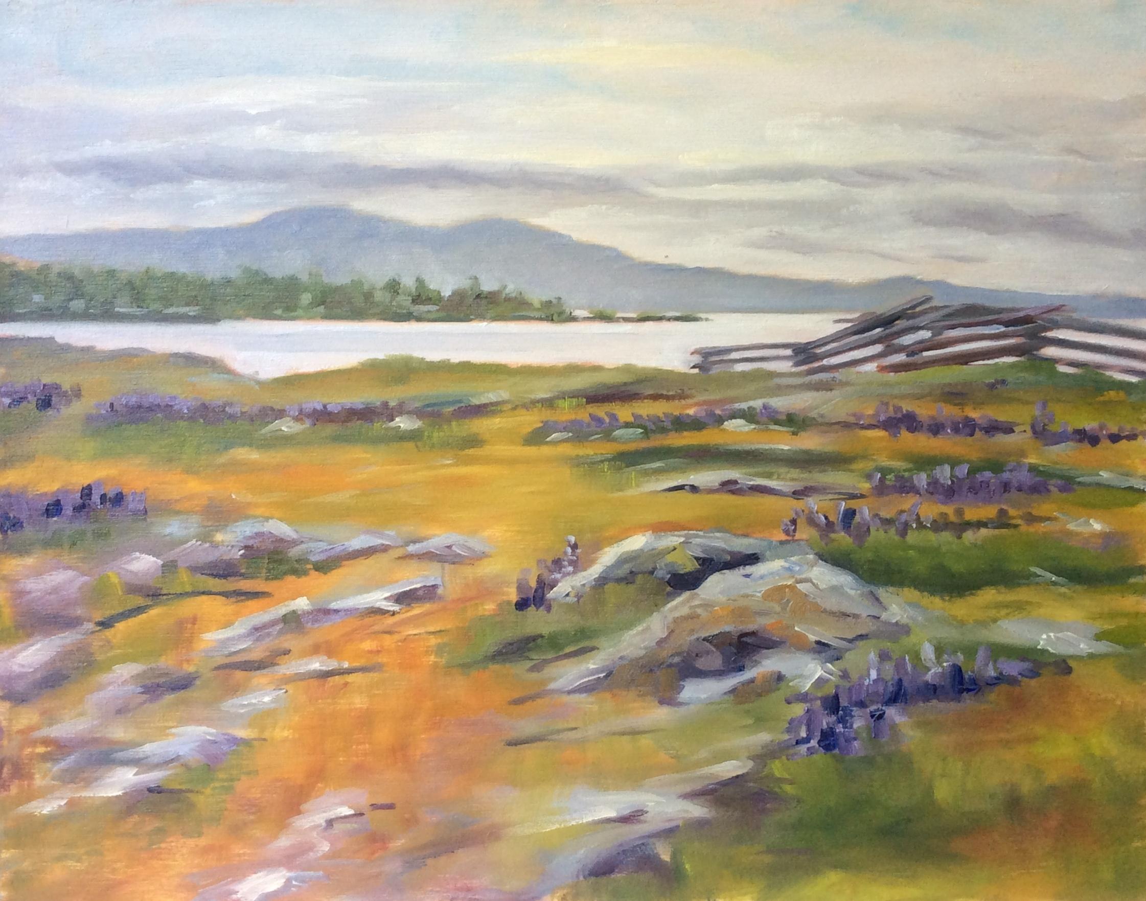 Spring Morning, Cattle Point   Oil 11 x 14