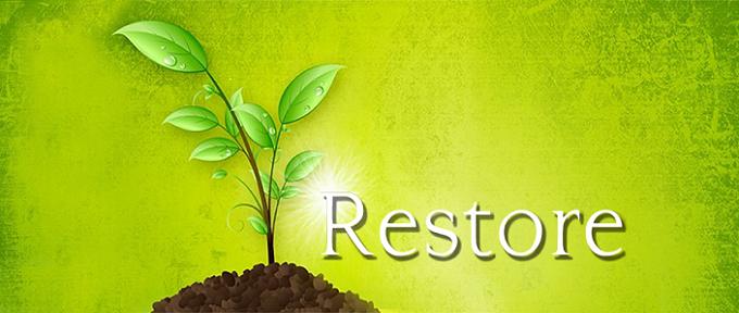 Lord-of-Restoration-Blog-Banner.png