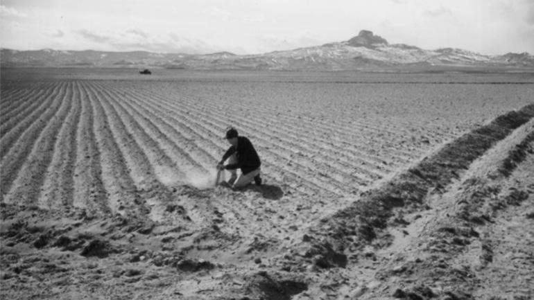 sowing-seeds-hope-marquee.jpg