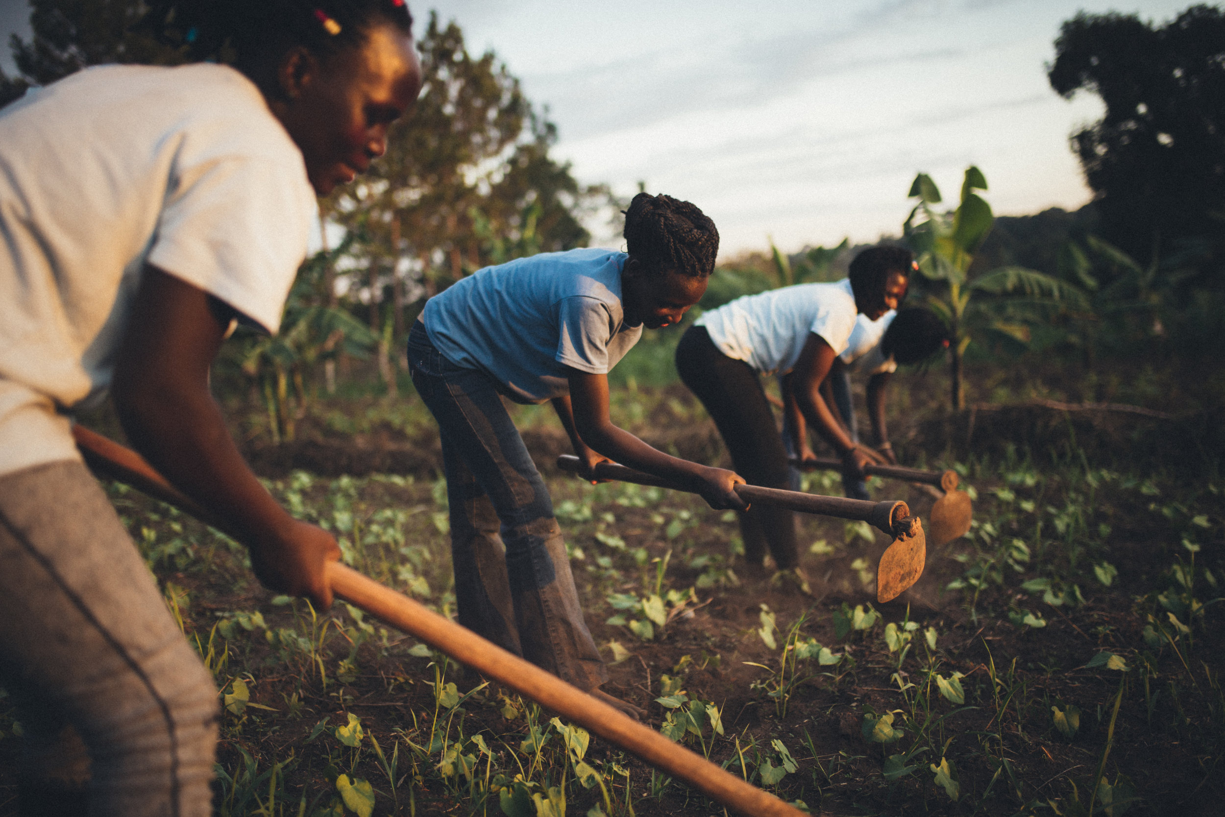 Farming Uganda Orphan Care.jpg