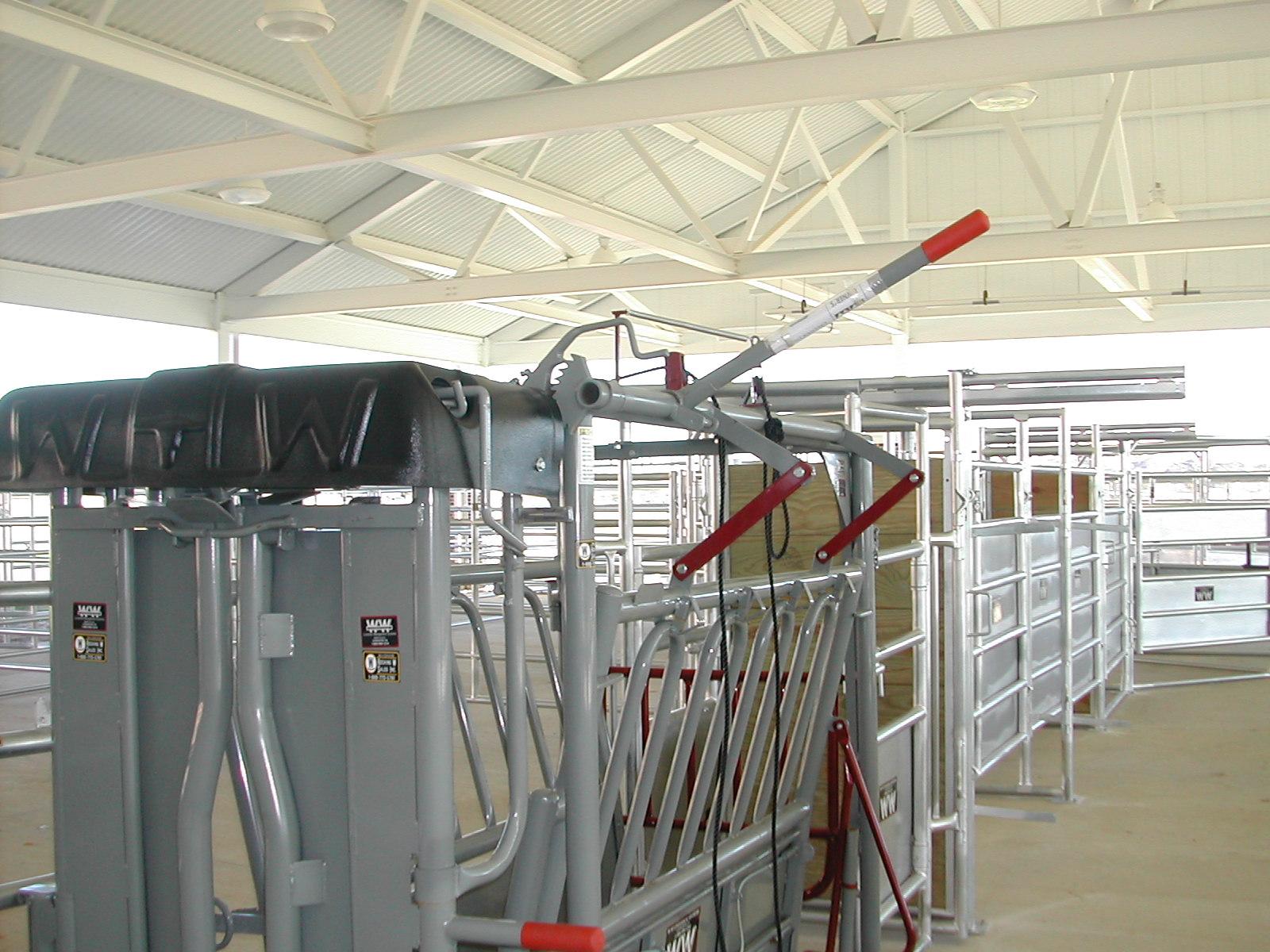 auburn university meats laboratory construction project 2.JPG