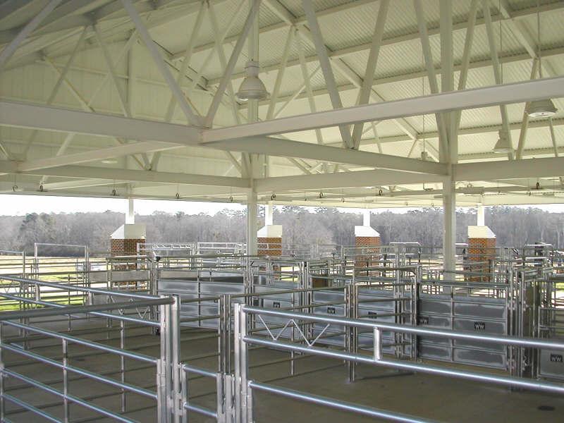 auburn university meats laboratory construction project.JPG