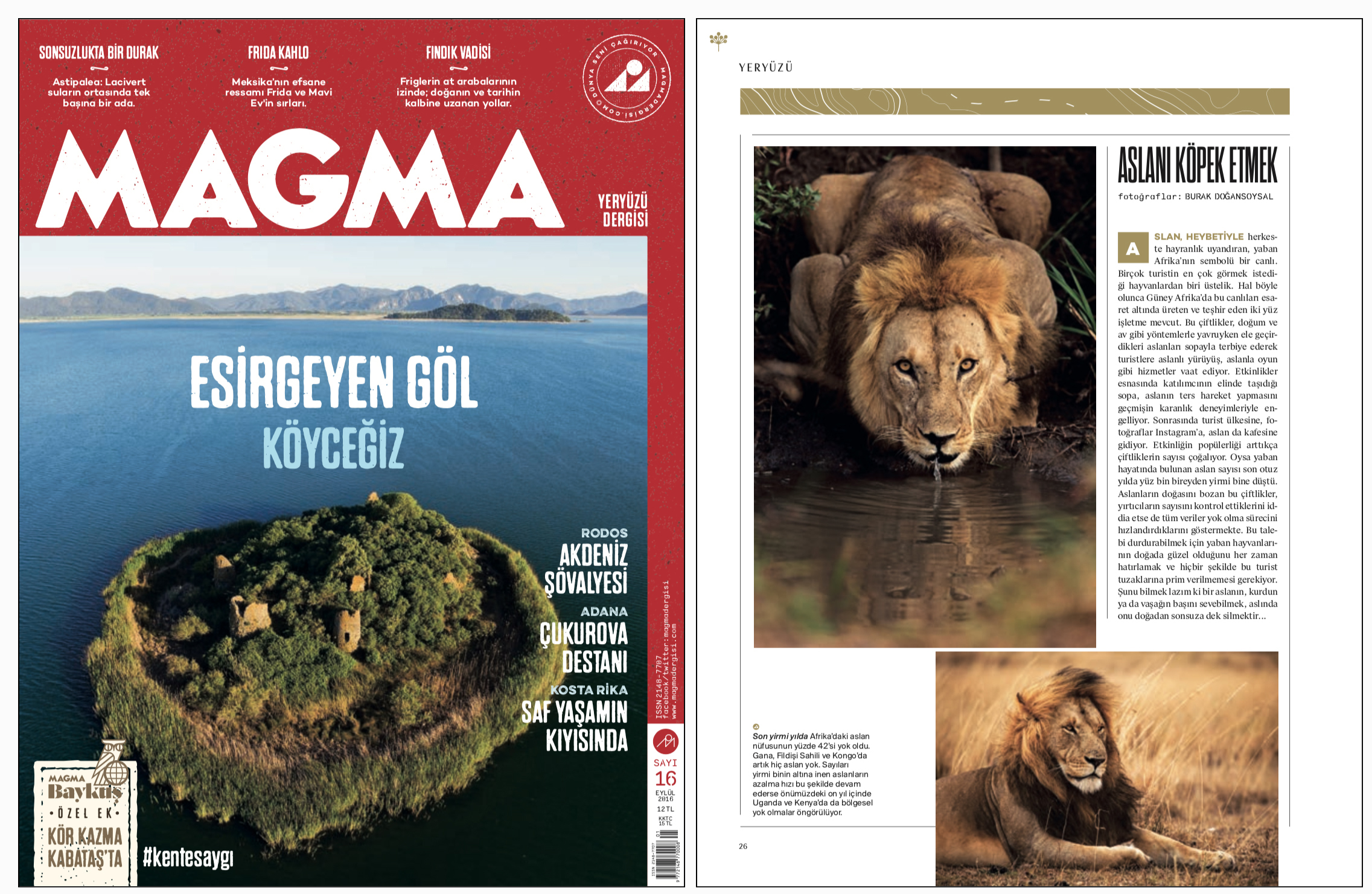 "MAGMA Magazine Issue #16   September 2016 | Page 26   ""To turn lions into dogs"" Photos by Burak Dogansoysal"