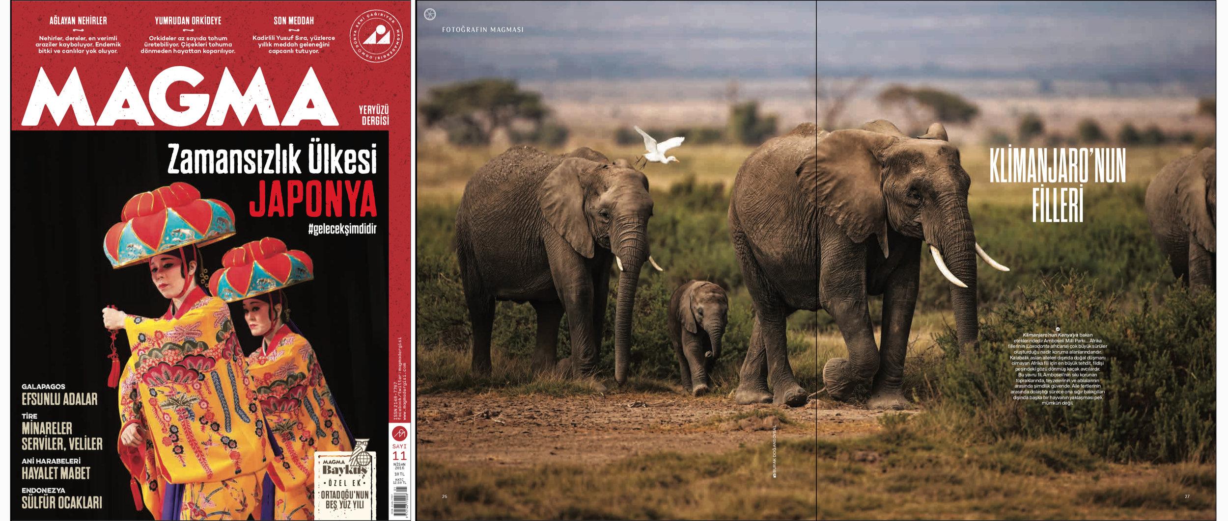 "MAGMA Magazine Issue #11   April 2016 | Page 26-27   ""Elephants of Kilimanjaro"" Words and photo by Burak Dogansoysal"