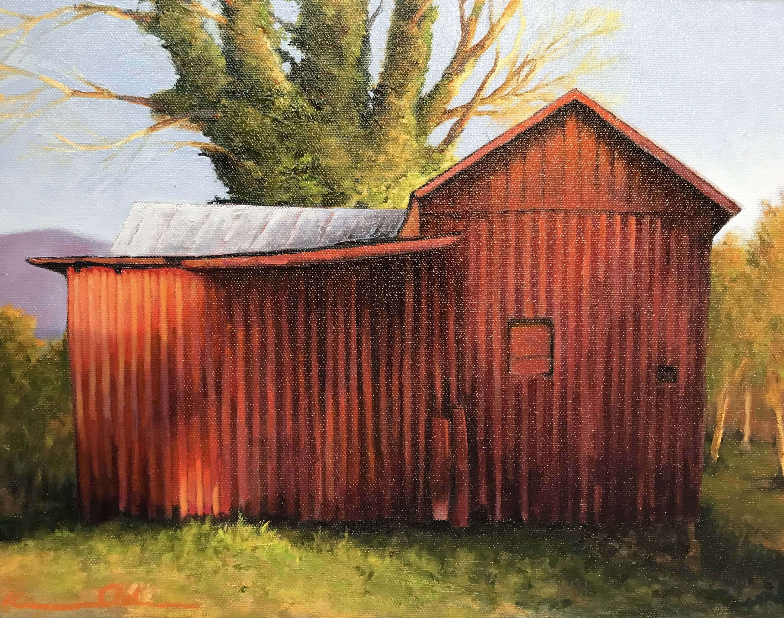 Red Shed oil on panel 11x14.jpg